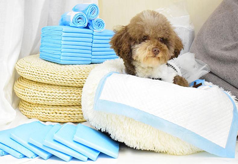 best dog training pad